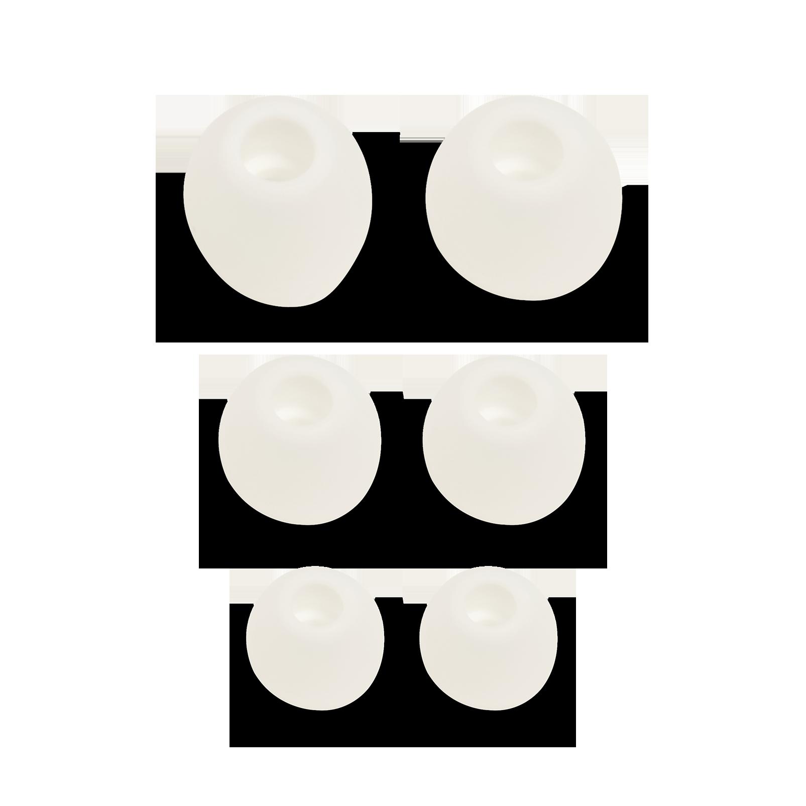 Ear tips set for V110BT